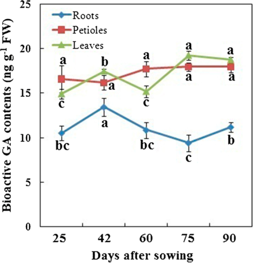 Bioactive GAs levels in different tissues during carrot growth and development. Error bars represent the standard deviation among three independent replicates. Data are expressed as the mean ± SD of three replicates. Different lowercase letters represent significant differences at P <0.05.