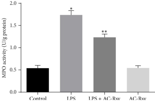 Effects of AC-Rsv on MPO activity in lungs stimulated by LPS. Data are expressed as mean ± S.D. n = 8. LPS injection significantly increased the MPO activity in lung compared with that of control, ∗P < 0.05 versus control, while pretreatment of AC-Rsv dramatically inhibited the elevating effects of LPS on MPO activity, ∗∗P < 0.05 versus ∗P.