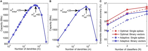 "(A) Theoretical capacity of neuron corresponding to digit ""5"" as a function of number of dendrites (m). The number of dendrites learned adaptively is  and the optimal number of dendrites corresponding to maximum capacity is . (B) Adaptively learned and optimal m values for digit ""7."" (C) Performance comparison of adaptively learned network (blue) with theoretically determined optimal network (red). Training was done on 20, 000 binary digit samples and test performance was measured on 10, 000 binary inputs (solid) and jittered single spike input patterns with Δ = 10 ms (dashed)."