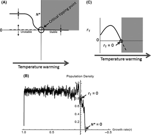 Critical tipping point and example thermal performance curves. Hypothetical depiction of a critical tipping point and thermal performance curves with temperature warming. (A) The critical tipping point, or transcritical bifurcation, exists where the stabilities of two different fixed points switch, such that a stable equilibrium (N*) of a positive density is replaced by a stable equilibrium of zero density. Arrows indicate the direction of nearby trajectories, where they are attracted to stable (solid lines) equilibria and repelled by unstable (dashed lines) equilibria. Here, as demonstrated in plot (B) the critical tipping point is reached when rT < 0, which is determined by the temperature sensitivity of this key parameter, r (C) (but note that a critical tipping point can occur with any change in conditions that affects underlying parameters). When rT ≤ 0, the population cannot recover from a perturbation, and beyond this point, the carrying capacity is undefined and extinction is inevitable. The gray boxes in (A) and (C) indicate the conditions – after a threshold has been breached – where populations can no longer persist.