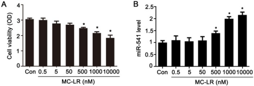 Effects of MC-LR (Microcystin-leucine arginine) on GC-1 cells. (A) Measurement of cell viability was carried out with the CCK-8 assay; (B) mRNA levels of miR-541 were measured with qRT-PCR in GC-1 cells after exposure to various concentrations of MC-LR for 24 h, as indicated; (C) alignment of orthologous segments of the 3′-UTR of p15, showing the conserved match to the miR-541 seed, and the seed matches (gray); (D) nucleotide sequences of murine miR-541 and the 3′-UTR of p15 region, which encompasses the miR-541 seed match region; (E) luciferase reporter assays were carried out in 293T cells following co-transfection of miR-541-mimic negative control (mimic-NC) or miR-541-mimic (mimic) together with wild-type (WT) p15 vector, mutant (MUT) p15 vector, or empty vector, as indicated. Firefly luciferase activity was normalized based on the Renilla luciferase activity; (F) The mRNA levels of p15 were measured with qRT-PCR in GC-1 cells exposed to various concentrations of MC-LR for 24 h, as indicated; (G) the protein levels of p15, murine double minute2 (MDM2), phospho-MDM2 (p-MDM2), p53, and phospho-p53 (p-p53) in GC-1 cells treated with various concentrations of MC-LR were measured by Western blot. The expression levels were quantified with ImageJ (right panels). β-actin was used as a loading control (n = 3); (H) GC-1 cells were treated with various concentrations of MC-LR for 24 h, as indicated. Cells were stained with FITC-coupled Annexin V and propidium iodide (PI). Both early and late apoptotic cells were revealed by flow cytometric dot plots (Q2 + Q3) and the data were summarized (right panels; n = 3). Results are expressed as means ± S.D. * p < 0.05.