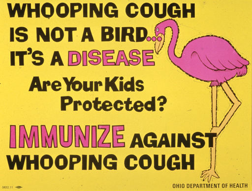 <p>Bright yellow poster with black and bright pink lettering.  Title at top of poster.  Note below title, caption below note.  Visual image is an illustration of a bright pink crane.  Publisher information in lower right corner.</p>