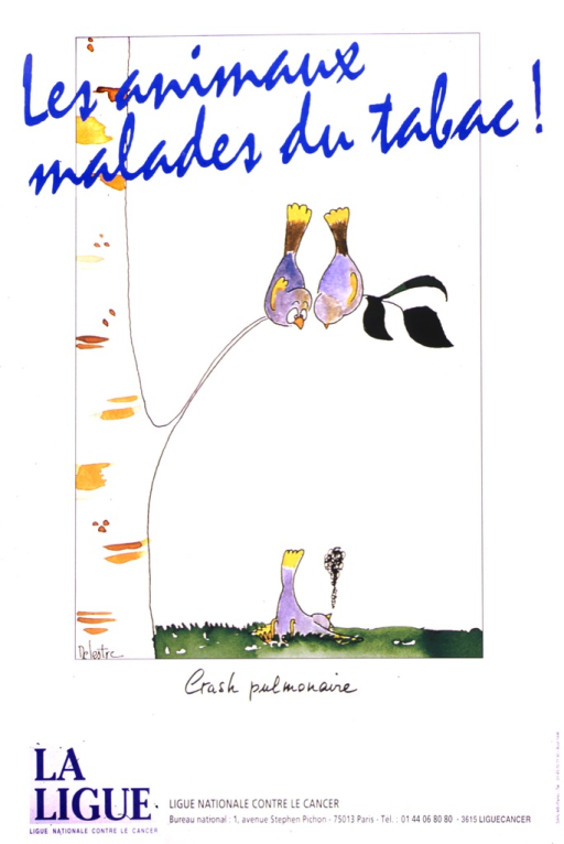 <p>There is a light-barked tree on the left side of the poster, with two grey and gold birds sitting on a branch.  They are looking down at a bird who has fallen onto the grass, with black smoke rising from his beak.  The translated caption is: Pulmonary crash.</p>
