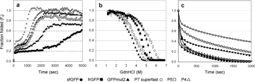 In vitro characterization of GFP folding.(a) Kinetic refolding measured as fraction folded (Ff) over time, (b) equilibrium unfolding measured as Ff versus GdnHCl molarity and (c) kinetic unfolding measured as Ff over time for the different GFP variants as indicated. Curve fits were added as a visual aid. All data is the average of three replicate experiments where the standard error for all data was <10%.