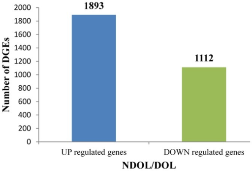 Differences in gene expression profile between the DOL and NDOL.'DGEs' indicate unigenes with FDR ≤0.001 and an absolute value of log2Ratio ≥1. Numbers of genes up-regulated and down-regulated in the NDOL compared to DOL are indicated above the blue or green bars, respectively.