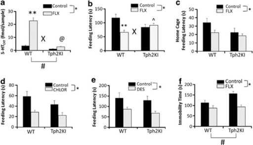 Neurochemical and behavioral responses to chronic fluoxetine (FLX) in wild-type (WT) and tryptophan hydroxylase 2 (R439H) knock-in (Tph2KI) mice. (a) Levels of extracellular 5-HT (5-HTEXT) in the hippocampus (HIP) were determined by microdialysis. (b) Feeding latency in the novelty suppressed feeding (NSF) test after chronic FLX treatment. (c) Home-cage feeding latency in WT and Tph2KI mice following chronic FLX. (d) Feeding latency in the NSF after acute chlordiazepoxide administration. (e) Feeding latency in the NSF following chronic desipramine (DES) treatment in WT and Tph2KI mice. (f) Immobility time in the tail suspension test (TST) following chronic FLX. *Significant main effect of treatment by two-way analysis of variance (ANOVA; P<0.05). **P<0.05 compared with WT control by Tukey's post-hoc test. ^P<0.05 compared with WT FLX by Tukey's post-hoc test. @P<0.05 by Tukey's post-hoc test compared with control Tph2KI mice. 'X' denotes a significant genotype by treatment interaction by two-way ANOVA (P<0.05) and '#' denotes a significant main effect of genotype (P<0.05 by two-way ANOVA); n=7–8 per group for a, n=19–21 per group for b, n=10 per group for c, n=9 per group for d, n=8–11 per group for e and n=22–27 per group for f.
