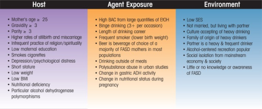Commonly Recognized Maternal Risk Factors for FASD from the Literature: A Public Health Variable Summary.
