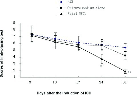 The scores of limb-placing test measured in animals with intracerebral injection of foetal NSCs, culture medium alone or PBS 3, 10, 17, 24 and 31 days after the induction of ICH. * and ** stand for the P-values less than 0.05 and 0.01, as compared with animals receiving the injection of culture medium alone or PBS at the correspondent time-points.