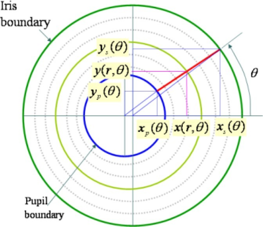 Projected polar coordinate system—image modified from the presentation [43].