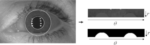 Normalized 2D iris pattern image and the mask that included the noise information; left image shows the original image with the pupil and iris circular information, the right-top image shows the normalized iris image, and the right-bottom is an example of the noise mask.