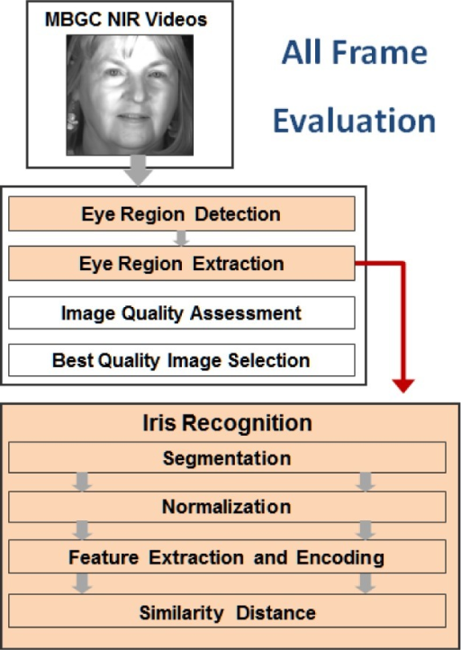 All frame evaluation for iris recognition after applying VASIR's eye region detection and extraction.