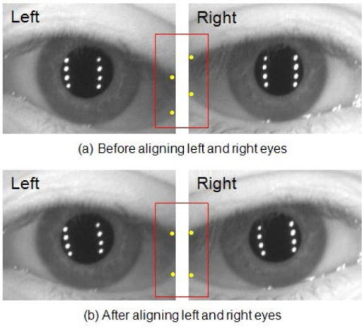 Eye position angular alignment process using the pupil center information; the red boxes show different locations of eyelids between before and after applying the eye position alignment method.