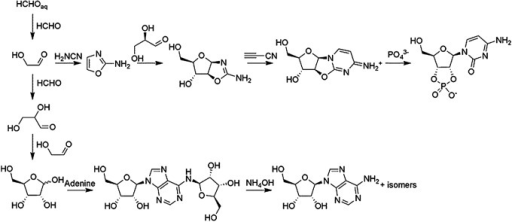Some previously explored prebiotic syntheses of nucleosides and nucleotides.