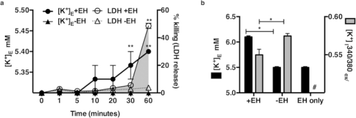 E. histolytica induced K+ efflux in IECs.(a) Extracellular K+ ([K+ mM]E) concentrations were measured in supernatants of HT-29 cells incubated with or without E. histolytica at a ratio of 1 trophozoite to 5 host cells for 1 hour. LDH was measured concurrently in supernatants to measure cell killing and graphed as the mean of three independent experimental values and s.e.m . **P < 0.001 (+EH) vs. (−EH) by Fisher's LSD test. (b) HT-29 cells were loaded with the K+-sensitive fluorescent dye PBFI to measure intracellular K+ concentration ([K+]I) upon interaction with E. histolytica. Cells showed a significant reduction in [K+]I after 30 minutes of contact with E. histolytica. The mean of 3 biological replicates for each experimental condition relative to the mean of untreated wild type cells is shown; error bars represent the s.e.m. (*P < 0.05; **P < 0.005; ***P < 0.001 calculated by two-tailed t test).