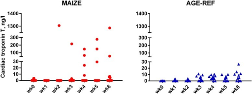 Comparison of cardiac Troponin T release.Weekly measurements of cardiac Troponin T release in individual pigs: MAIZE (n = 12), AGE-REF (n = 12). Blood samples at killing week 7 drawn by cardiac puncturing and not shown.