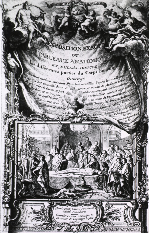 <p>A group of men are gathered in a small amphitheater where a dissection is in progress; a skeleton stands to the left, and dogs are feeding on internal organs that have dropped to the floor. Allegorical scene with angels is at the top of the page.</p>
