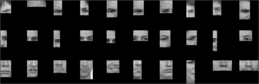 Face fragments with high (top), intermediate (middle) or low (bottom) individuation-specific information.