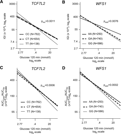 Association between IGI and glucose 120 min by TCF7L2 SNP rs7903146 (A) and WFS1 SNP rs10010131 (B). Association between AUCC-peptide/AUCGlucose and glucose120 by TCF7L2 SNP rs7903146 (C) and WFS1 SNP rs10010131 (D). Lines represent regression lines. Data were loge-transformed prior to statistical analysis and adjusted for sex, age, BMI, and OGTT-derived insulin sensitivity index by multivariate linear regression analysis.