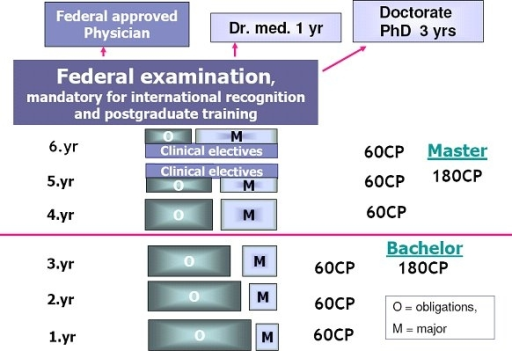 Bologna Model of Medical Studies: Physician Track