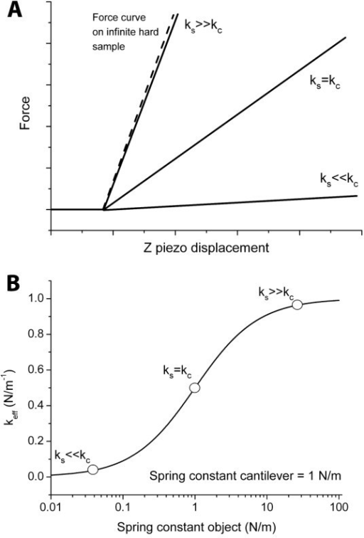 Effective spring constant as a function of sample stiffness. (A) Force versus z piezo displacement curve in case of sample spring constant larger, the same or lower compared to the spring constant of the cantilever. (B) Effective spring constant (keff, representing the slope of the force curves in A) as a function of the stiffness of the sample. From the slope of this curve it is clear that the maximum sensitivity is achieved when both spring constants are of the same order of magnitude.