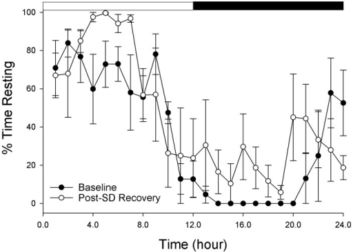 Quiescence (sleep) deprivation in the cuttlefish Sepia officinalis.Five juvenile cuttlefish were sleep deprived for 48 hours by continuous visual stimulation via a computer monitor positioned beneath their aquarium. During the following 24 hour recovery period, there was an overall compensatory increase in quiescence as revealed by a main effect of condition (baseline rest vs. after rest deprivation) in a 2 way ANOVA (Time and Condition as main factors): Condition: F = 6.3, p<0.013, Time: F = 9.6 p<0.001, interaction: F = 1.3, p = 0.18). Data are hourly mean (± std. deviation) behavioral scores.