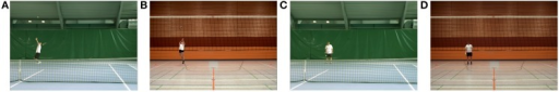 Screenshots of all four experimental conditions. Each of the 128 video clips lasted 2.9–4.6 s. (A) Male tennis player performing a tennis serve (Tennis Anticipation condition). (B) Female volleyball player performing a volleyball serve (Volleyball Anticipation condition). All serve sequences were stopped at ball–racket respective ball–hand contact. (C) Female tennis player bouncing the ball with her racket (Tennis Observation condition). (D) Male volleyball player bouncing the ball with his hand (Volleyball Observation condition).