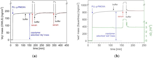 In situ investigation of PLL-g-PMOXA (α = 0.22) copolymer adsorption and serum exposure by (a) optical waveguide lightmode spectroscopy (OWLS) and (b) quartz crystal microbalance (QCM-D). Nb2O5-coated waveguides and quartz crystals were first incubated with the polymer in a physiological buffer solution (10 mM HEPES + 150 mM NaCl adjusted to pH 7.4) and then exposed to full human blood serum for 15 min. The surfaces were rinsed with buffer before and after each adsorption step. In (b) the 'wet' mass (—) is calculated from the inversely proportional normalized frequency shift by using the Sauerbrey relation, Equation (3). The increase in dissipation (—) upon polymer adsorption is related to an increased viscoelasticity of the adlayer. The kinks in the curves are due to temperature instabilities upon solution injection.