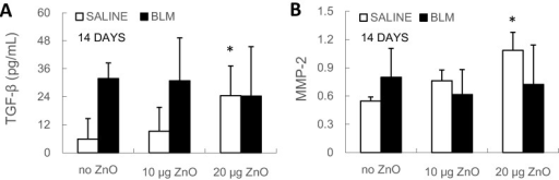 (A) TGF-β level in BALF and (B) MMP-2 relative mRNA expression level in lung tissue were determined at Day 14 after administration. Mice were exposed to ZnO nanoparticles with or without BLM treatment. The number of mice was six in the SALINE-no ZnO, seven in the SALINE-10 µg of ZnO, six in the SALINE-20 µg of ZnO, six in the BLM-no ZnO, six in the BLM-10 µg of ZnO and seven in the BLM-20 µg of ZnO group. Data are the means ± SD; * p < 0.05; compared to the vehicle control.