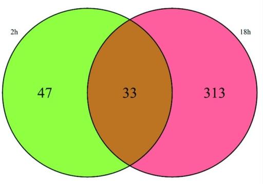 Venn diagram in pe house wiring diagram symbols venn diagram of the differentially expressed genes deg open i rh openi nlm nih gov venn diagram in power bi venn diagram in powerpoint 2013 ccuart Image collections