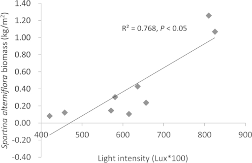 Spartina alterniflora biomass decreased with declining light intensity.