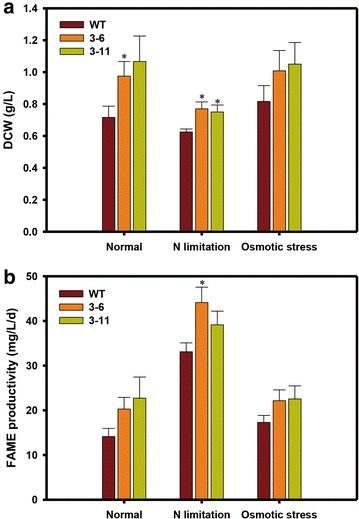 DCW and FAME productivity of NsbHLH2 transformants under various culture conditions. The biomass for DCW (a) and FAME productivity (b) was obtained at day 8. Cells were cultivated at 25 °C, 120 rpm, 120 µmol photons/m2/s of fluorescent light, and 0.5 vvm of 2 % CO2. The data points represent the average of samples and error bars indicate standard error (n = 4). Significant differences, as determined by Student's t test, are indicated by asterisks (*P < 0.05, **P < 0.01, ***P < 0.001)