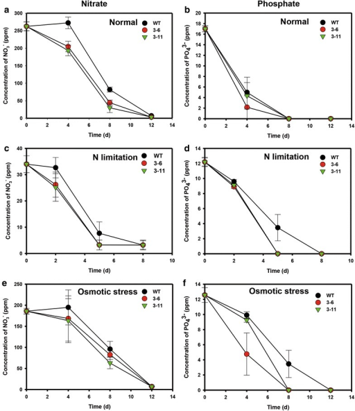 Nutrient consumption during growth of NsbHLH2 transformants. a Nutrient uptake was estimated by measuring concentrations of nitrate (a, c, e) and phosphate (b, d, f) in the culture media under normal (a, b), N limitation (c, d), and osmotic stress conditions (e, f). Cells were cultivated at 25 °C, 120 rpm, 120 µmol photons/m2/s of fluorescent light, and 0.5 vvm of 2 % CO2. Data points represent means and standard errors (n = 4)
