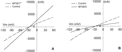 I-V relationship of R334C CFTR is modified by MTSET+ and MTSES−. (A) I-V plots at steady-state activation. Oocytes were continuously perfused with a cocktail containing 10 μM isoproterenol and 1 mM IBMX (control). An ∼5-min exposure to 1 mM MTSET+ induced an approximate doubling of the conductance and a change in the shape of the I-V plot. (B) I-V plots obtained at steady-state activation (control) and after ∼5-min exposure to 1 mM MTSES− that attenuated the conductance by ∼50% and enhanced inward rectification.