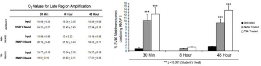 Effects of HDACi treatment on chromosomes carrying RNA Polymerase II. 30 min, 8 hour and 48 hour SV40 minichromosomes either untreated or treated with 250 μM NaBu or 120 nM TSA were immune selected using 10 μl of antibody against RNAPII. Data is expressed as the percentage of SV40 minichromosomes containing RNA Polymerase II and represent the average of three independent experiments.