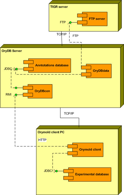 Unified Modelling Language (UML 2.0) deployment diagram of Orymold system. Orymold is a distributed system composed of a client and an annotations database server. The annotations server, OryDB, stores annotations from TIGR using its publicly available FTP server through the OryDBdata component. The OryDBcon component from OryDB provides a web service for retrieving annotations and mapping sequences as requested by the Orymold remote client. The Orymold client component communicates with the OryDB system through its RMI interface, and manages data stored in the experimental database. It has to be noted that the experimental database could be distributed and serve as a common experimental data warehouse for several clients.