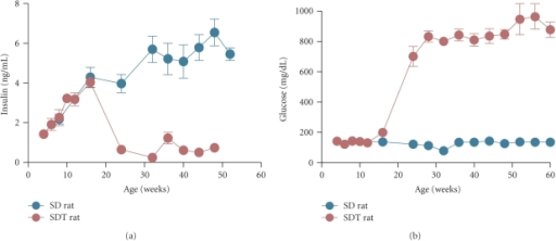 Nonfasting plasma insulin and glucose levels in Spontaneously Diabetic Torii (SDT) rats and control Sprague-Dawley (SD) rats. Diminish of pancreatic β-cells evokes hypoinsulinemia (a) and subsequent severe hyperglycemia (b) in SDT rats. Plasma glucose levels sharply increase at 15–20 weeks of age and eventually reach a plateau, approximately 800 mg/dL. Each value represents mean ± S.E.M. (N = 6–8).