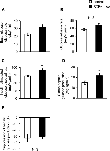 Hyperinsulinemic-euglycemic clamp test in RXRγ mice, fed a chow                            diet.(A) Basal glucose disposal rate, (B)                            glucose infusion rate needed to maintain euglycemia,                            (C) insulin-stimulated glucose disposal rate and                                (D) clamp hepatic glucose production (hepatic                            glucose production during the clamp period) (E)                            suppression of hepatic glucose production during the clamp period in                            RXRγ mice. Male mice, 13∼16 weeks of age, were used. The number                            of animals used was 6 for control mice (open bars) and 7 for RXRγ                            mice (filled bars). * P<0.05 and **                                P<0.01 compared with respective control. N. S.,                            not significant.