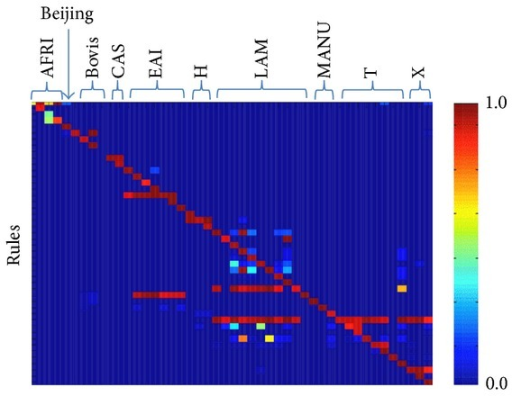 The heat map represents the posterior probability of each rule given the sublineage for the SITVIT dataset. A strong association of a rule in predicting a sublineage is shown with a red square while a blue square represents no relation. Here H includes URAL-1 and URAL-2 and LAM includes Turkey and Cameroon sublineages.