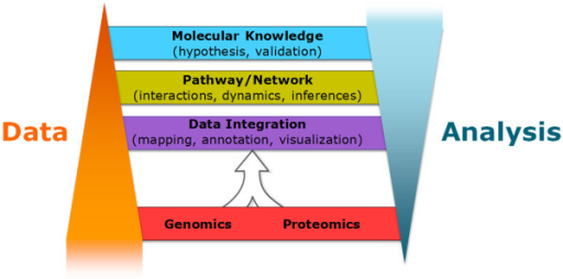 Climbing up a proteogenomic data ladder. Integrative omics experiments generate tiers of data and knowledge to improve cancer systems biology. Proteogenomic data accumulate at the lower tiers of the data ladder (proteogenomic mapping of linear sequences and protein expression and PTM changes due to genomic alterations), and compress as data analyses become more labor-intensive, complex, and multi-dimensional at the network and pathway level (upper tiers).