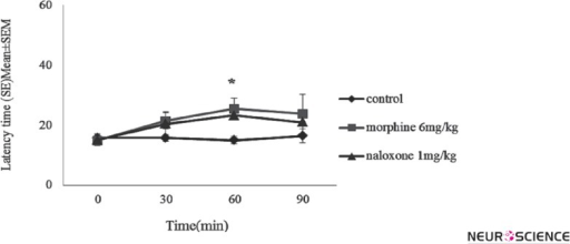 The effect of morphine (6mg/kg) and naloxone (1mg/kg) on latency times to pain stimulus: each line show the mean ± SEM for every drugs in four times (every 30 min from 0 up to 90). Control group received saline/saline, other groups received morphine or naloxone / saline. *P < 0.05 show significant difference between morphine 6mg/kg and control group at the same time.