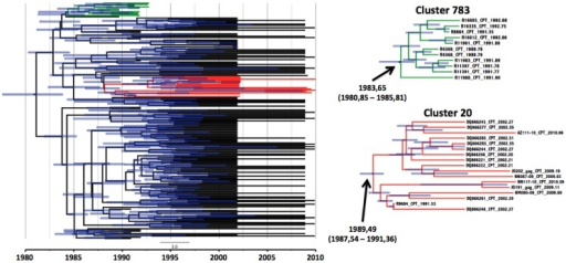 gag p24 transmission clusters of Capetonian sequences.On the right hand side are the two individual gag clusters with their estimated time of origin. On the left hand side is a big Bayesian time resolved phylogenetic tree with 193 gag p24 Capetonian sequences with the two monophyletic clades that were identified in the PhyloType analysis.