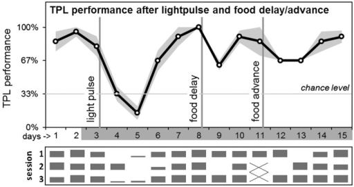 Average daily TPL performance after abrupt LEO and FEO phase-shifts. After testing on day 3, in the beginning of the subjective dark phase, a 3h light pulse (400–800 lux) was applied according to an Aschoff type II protocol. After performance recovered, food was delayed by 6 hours (after testing on day 8). After performance recovered, food was advanced by 6h on day 11. Days are shown on the x-axis (non-shaded days indicate testing in LD; shaded days indicate testing in DD). The grey area around the black performance curve indicates SEM. Vertical lines indicate the interventions. Chance level is indicated by the horizontal line. Daily session-specific performance is shown in bar charts underneath the average daily performance graph (x-axis days are aligned; vertical height of the bars represent relative performance).