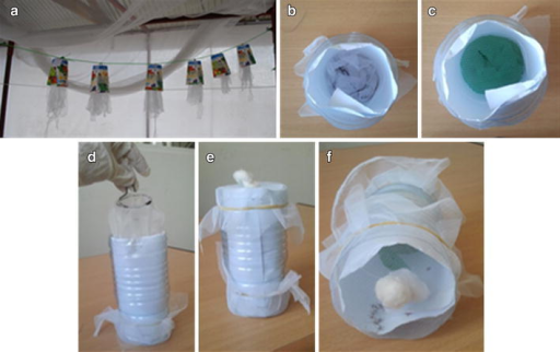 Knock-down test. a Polyester strips treated with transfluthrin were kept in half paper cups and hung from a thread to mimic the light and ventilation condition in the modified MLBs. b, d The polyester strips were placed at the bottom of the plastic bottle, and covered with a plastic mesh to avoid contact between the strips and the mosquitoes (c). e Both sides of the cylinder were closed using a net. f Example of an experiment with polyester strips treated with 90 mg transfluthrin. After a few minutes all mosquitoes were knocked down at the base.