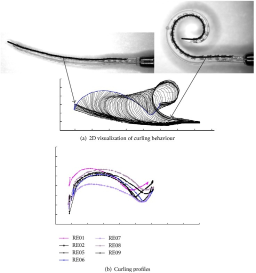 (a) Visualization of the curling behaviour of a preformed Contour Advance electrode array (RE06) using the 22 detected platinum contacts and the location of the Softip. The start configuration (on the left side) with stylet inside is characterized by a nearly straight configuration (compared with Figure 2(a)). Due to stylet extraction, the electrode array returns into its preformed spiral shape (right). By tracking the complete range of curling behaviour, the movement of the tip of the implant shows a typically sigmoidal curve. This curve is indicated using a bold blue line and is referred to as the curling profile of the electrode array (here RE06). Scale marks indicate 1 mm. (b) After determination of all curling profiles, four electrode arrays were selected and used in this study, which together cover the full range of curling behaviour investigated. RE01 and RE08 represent electrode arrays with a highly pronounced curling behaviour, measured as deflection of the tip from the straight configuration. RE06 was chosen to represent a moderate curling profile and RE07 to represent the flattest one.