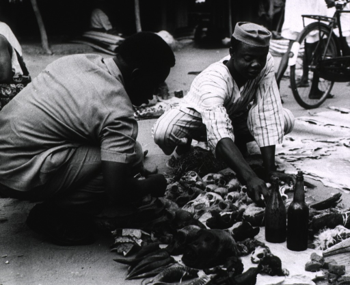 <p>Dr. Clovis Akindes chats with a traditional druggist whose wares are displayed in the market place; such items as beaks of birds, skins of mice, horns, and skulls of monkeys.</p>