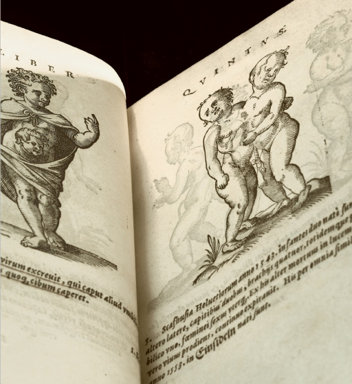 <p>Image of two facing pages. The left-hand page depicts a child born with the head of its unformed twin growing from its stomach; the date is not given. The right-hand page depicts conjoined twins born in Switzerland in 1543; the caption reminds the reader of a similar Swiss case from 1553. De conceptu, fols. 39 verso and 40 recto.</p>