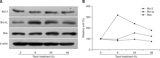 Bcl-xL expression in dendritic cells increased after taxol treatment. Representative data from three independent experiments are presented (A). The optical density of each band was divided by that of the β-actin band, and the ratio at 0 h was set at 100% (B).