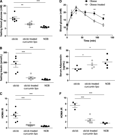 Improved insulin signaling in ob/ob mice treated with curcusomes. Fasting blood glucose (A), insulin (B), and HOMA-IR (C) from ob/ob mice injected intraperitoneally with curcusomes for 72 h. ***P ≤ 0.001, **P ≤ 0.01 (one-way ANOVA followed by Bonferroni post hoc test). D: GTT from mice treated in A. **P ≤ 0.01 (one-way ANOVA followed by Bonferroni post hoc test). E: Serum adiponectin levels from mice treated in A. *P ≤ 0.05 (Student t test). F: Fasting HOMA-IR from ob/ob mice injected intraperitoneally with curcusomes for 4 weeks. ***P ≤ 0.001 (one-way ANOVA followed by Bonferroni post hoc test).