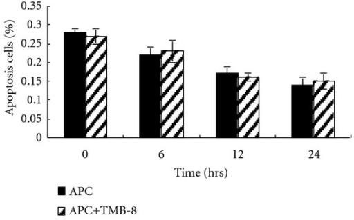 Calcium inhibition did not alter the antiapoptotic effect of APC. After exposure to 10 ng/mL LPS for 24 h, HUVECs were treated with 150 nM APC for 0, 6, 12, and 24 h in the presence or absence of 50 μM TMB-8, an inhibitor of calcium release from the ER. There was no significant difference in the percentage of apoptosis cells between the two groups, which was detected by flow cytometric analysis (APC versus APC + TMB-8, P > 0.05).