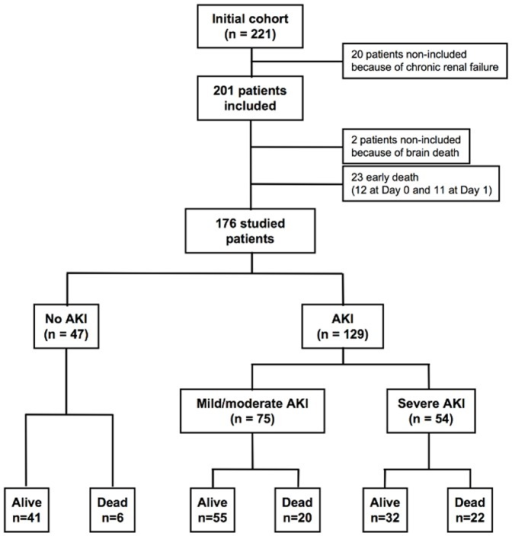 Flowchart of the enrolled septic patients with different AKI severity and outcome.